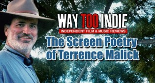 Video Essay: The Screen Poetry of Terrence Malick