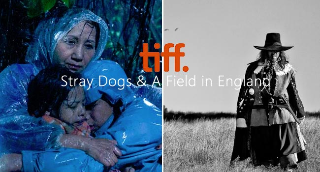 TIFF 2013: Stray Dogs & A Field in England Film Festival