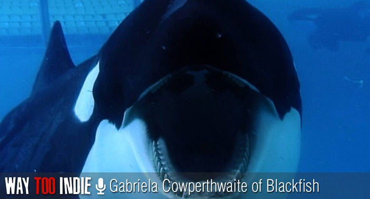 Gabriela Cowperthwaite Talks 'Blackfish' and the Secret Dangers of Sea World