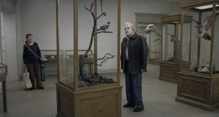 A Pigeon Sat On A Branch Reflecting On Existence (TIFF Review)