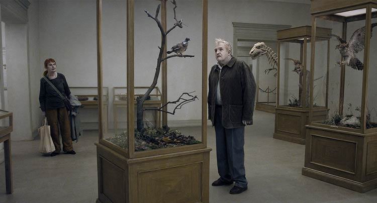 A Pigeon Sat On A Branch Reflecting On Existence (TIFF Review) Movie