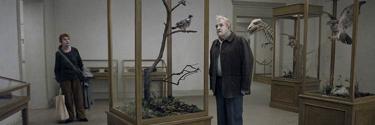 A Pigeon Sat On A Branch Reflecting On Existence movie