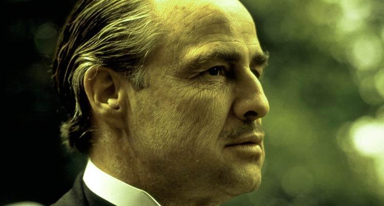 Don Vito Corleone moustache