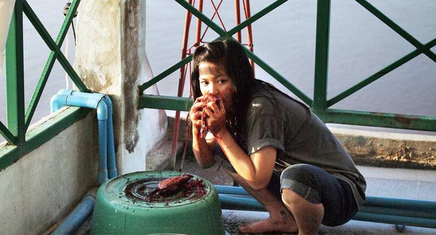 Mekong Hotel 2012