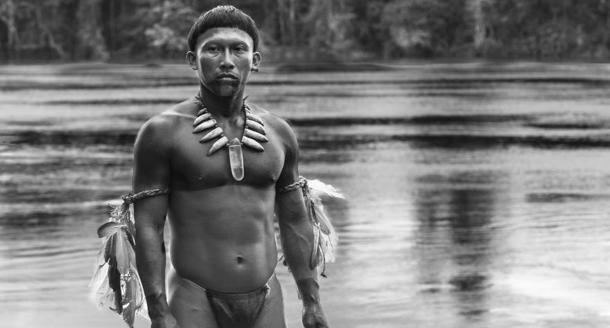 Embrace of the Serpent movie