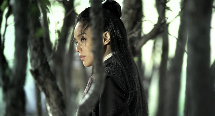 The Assassin foreign film