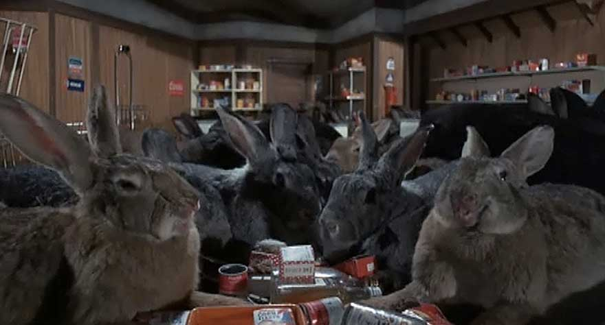 rabbits in Night of the Lepus